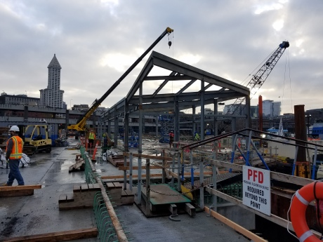 A westward-facing image at King County Water Taxi's future Passenger Only Ferry (POF) facility. With completion of the shelter's structural frame - show being built in this picture - it marks the first time work on the facility has gone vertical.